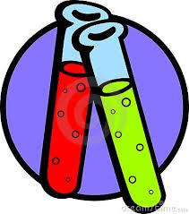 club de ciències