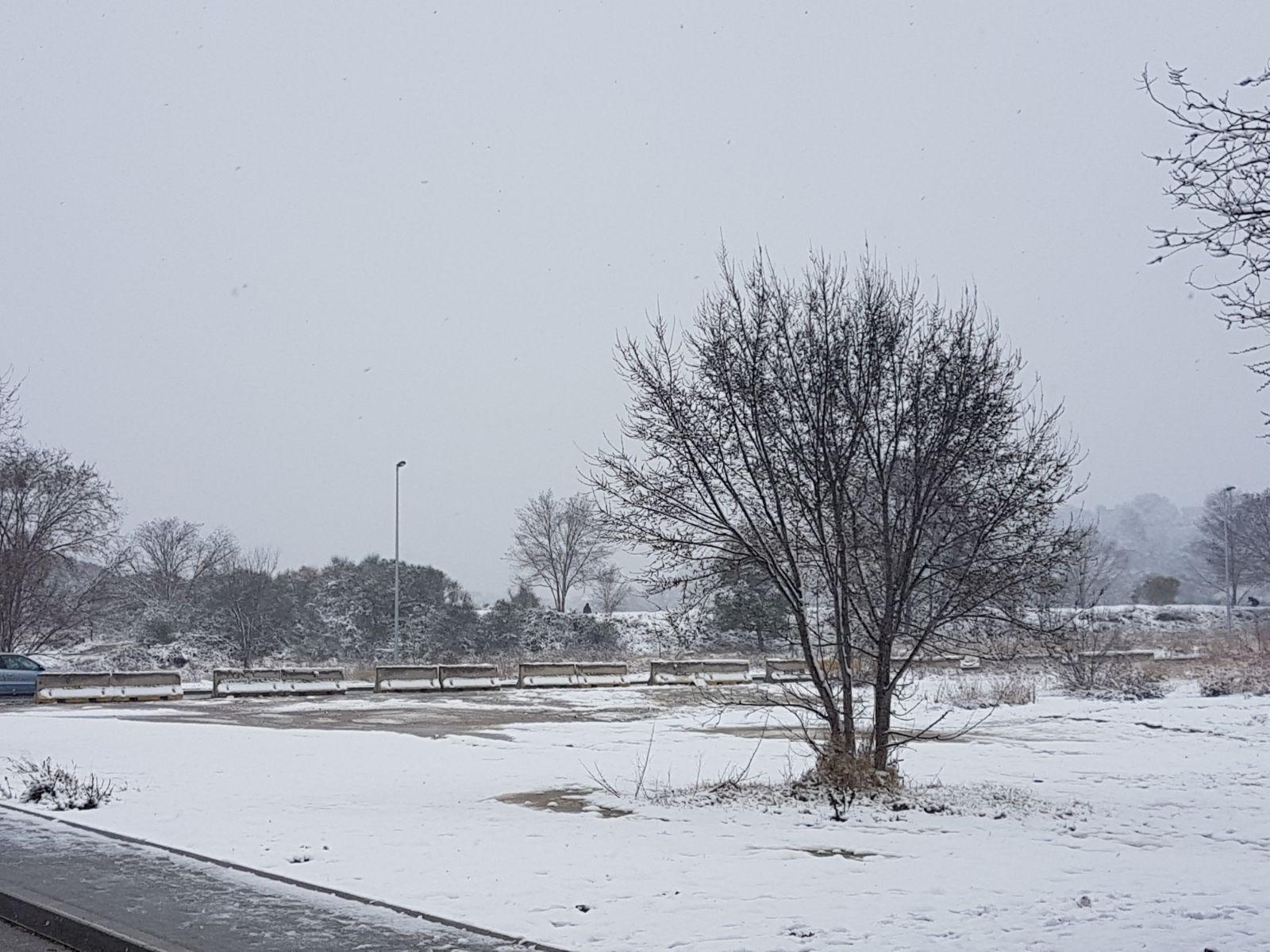 2018-02-28-PHOTO-00000256