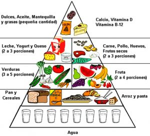 partes-de-la-piramide-alimenticia